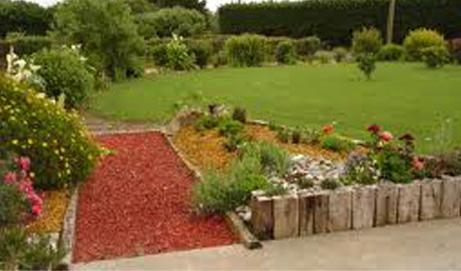 R aliser un bon paillage pour vos plantations terre et for Realiser son jardin