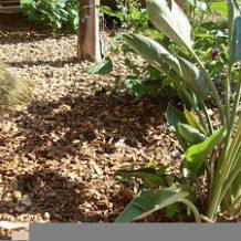 La toile de paillage, la solution pour protéger vos plantations des mauvaises herbes