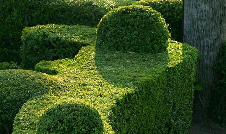 Comment prot ger son jardin du vent terre et jardin - Comment retourner la terre du jardin ...