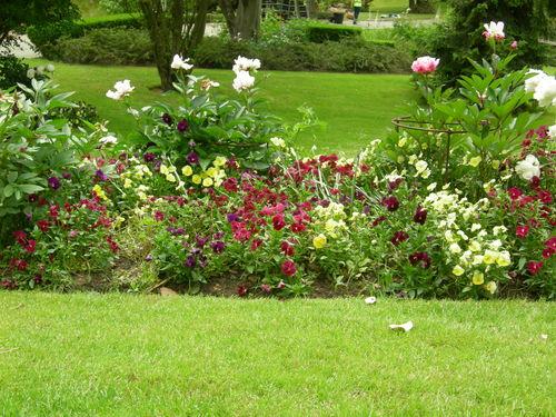 Conseil du lundi pour votre jardin terre jardin for Conseil plantation jardin