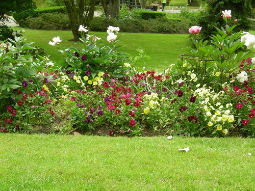 conseil du lundi pour votre jardin terre jardin terre et jardin. Black Bedroom Furniture Sets. Home Design Ideas