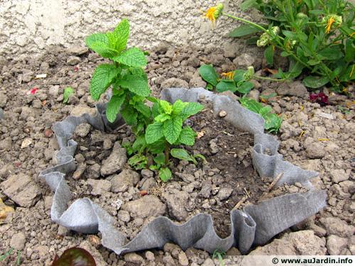 Am nager son jardin avec du feutre g otextile terre et for Geotextile pour bassin