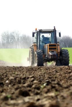 Le guide du jardinage blog terre et jardin terre et jardin - Produit naturel contre les pucerons ...