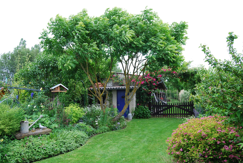Quoi Planter Dans Une Terre Argileuse le guide du jardinage - blog terre et jardin | terre et jardin