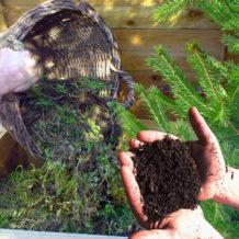 Le compostage domestique, 5 conseils pour un bon compost