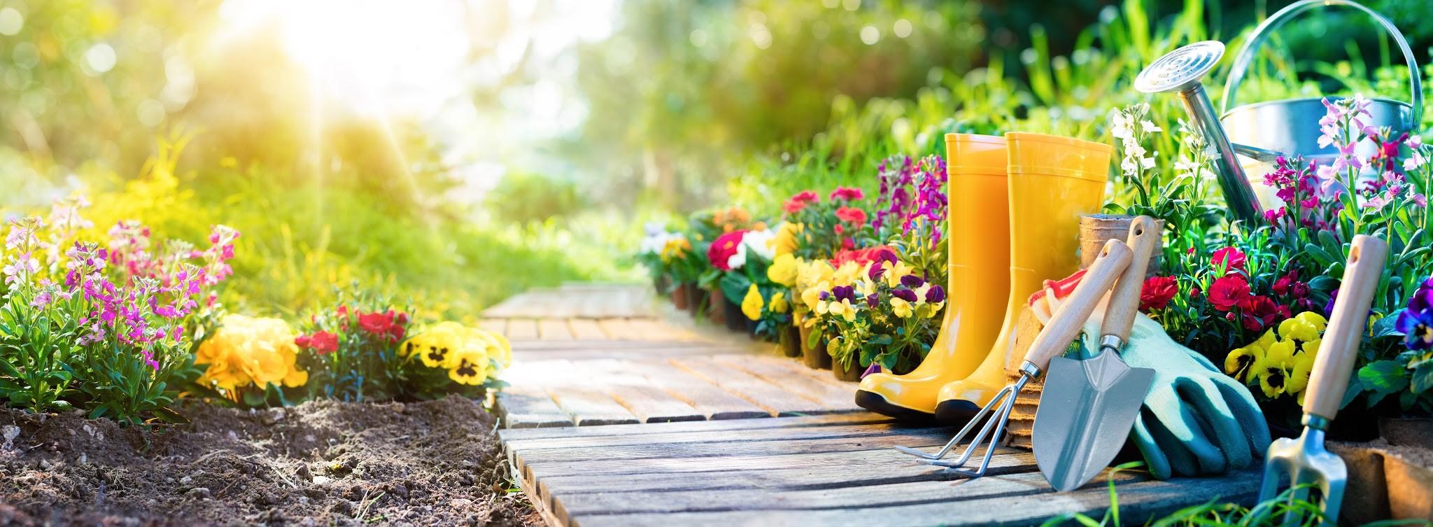 Comment réduire la facture d'entretien et d'aménagement de son jardin ?