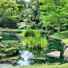 Aménagement extérieur, comment construire un bassin d'eau ?