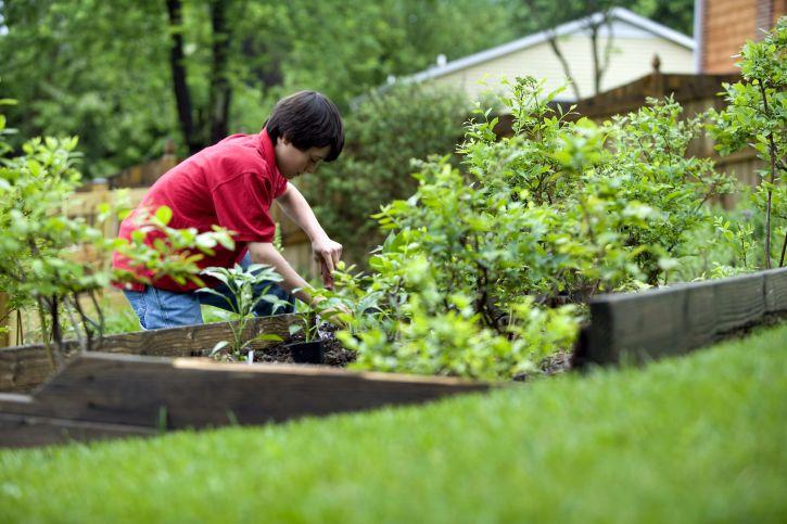 Comment redonner vie à son jardin?