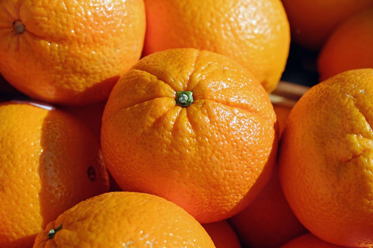 Savourez les oranges de votre culture d'agrumes