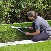 Délimiter, conceptualiser et entretenir son jardin