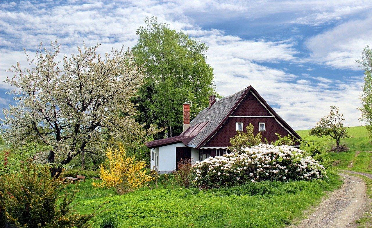 Pourquoi faire appel à un paysagiste pour l'aménagement du jardin ?