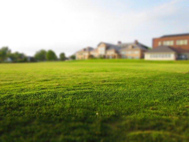 Gazon synthétique : un excellent revêtement de sol pour le jardin