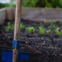 Préparer le sol de son potager : conseils pratiques