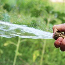 4 conseils pour jardiner avec peu d'eau